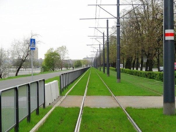 29 Трамвай юлларындагы газон