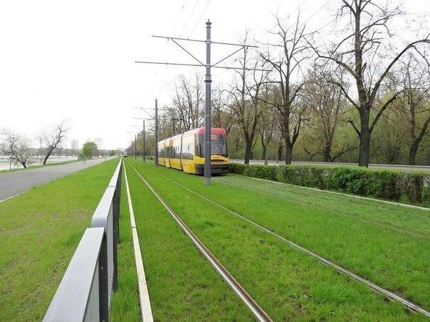 38 Трамвай юлларындагы газон