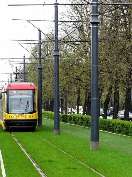 45 Трамвай юлларындагы газон